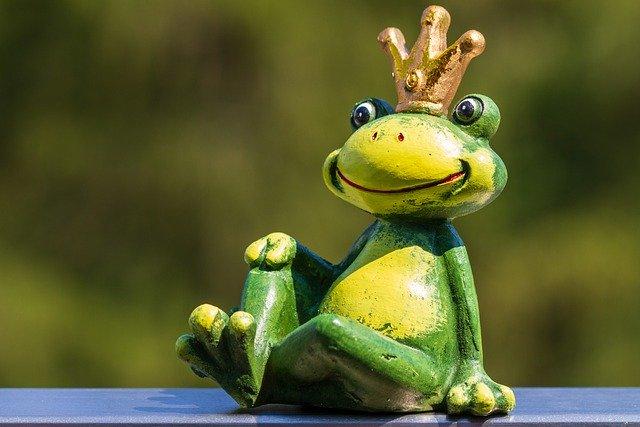 website audit screaming frog